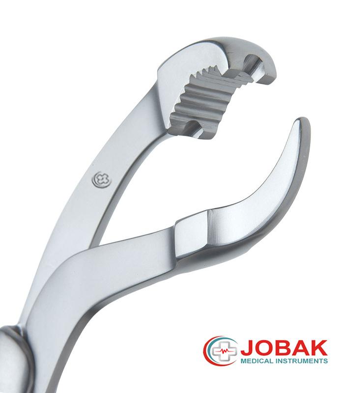 verbrugge clamp 2